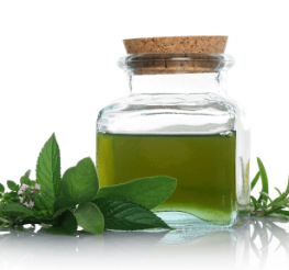 Difference between Peppermint Oil and Peppermint Extract