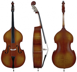 Difference between a Cello and a Double Bass