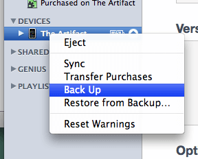 backup feature in iTunes