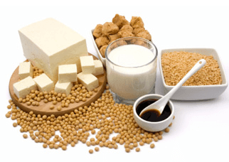 Foods rich in soy protein