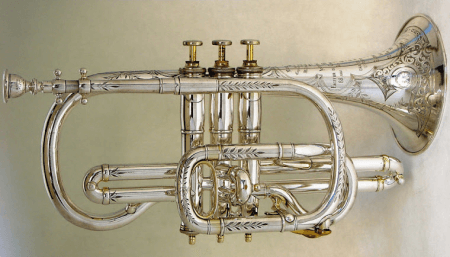 elegant cornet on display