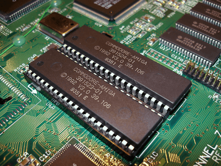 ROM (Read Only Memory) chips