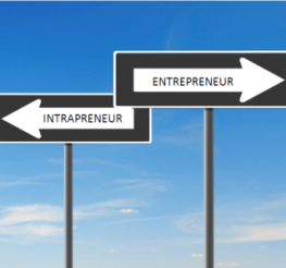 Difference between an Entrepreneur and an Intrapreneur