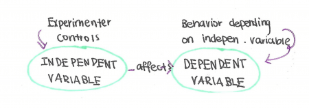 Independent Vs Dependent Variables Difference