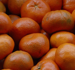 Difference between a Tangerine and a Mandarin