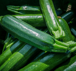 Difference between Zucchini and Green Squash