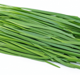 Difference between Chives, Scallions, and Green Onions