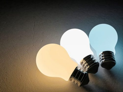 Difference Between Daylight and Soft White LED Bulbs