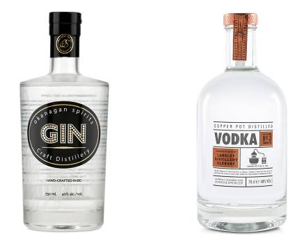 Difference Between Gin and Vodka